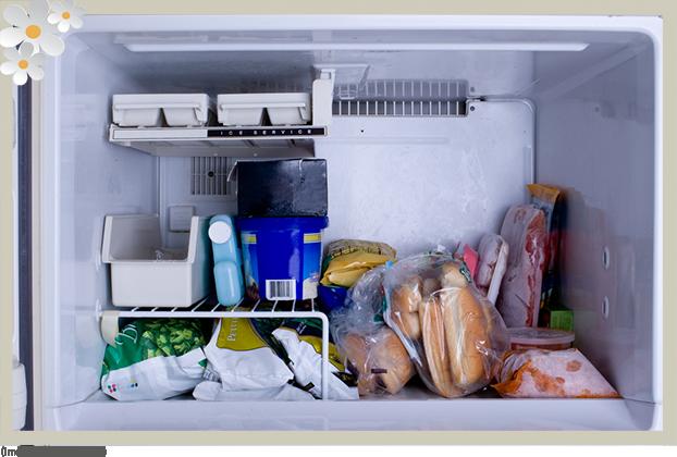1009 congelador