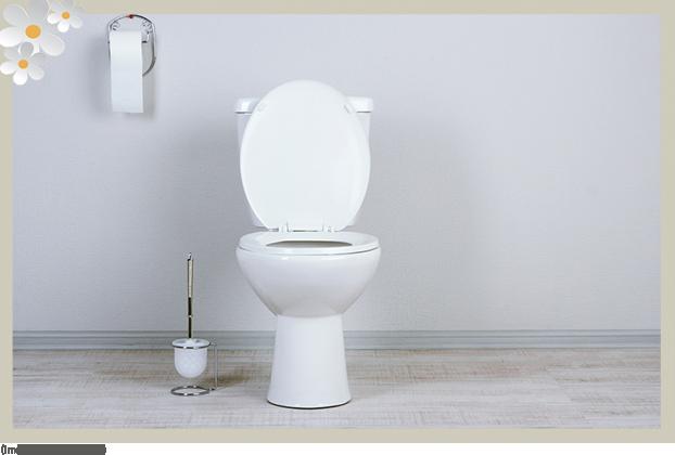 Dicas de como desentupir o vaso sanitário