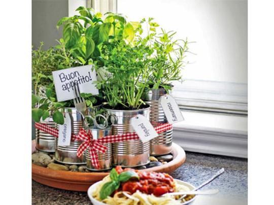 Dicas da Dona – Mini hortas em casas ou apartamentos. Inspire-se!