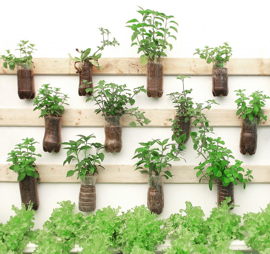 Como fazer um Jardim suspenso