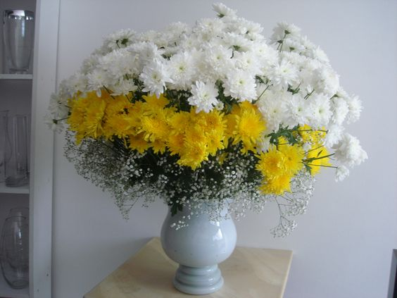 crisantemos amarelos e brancos