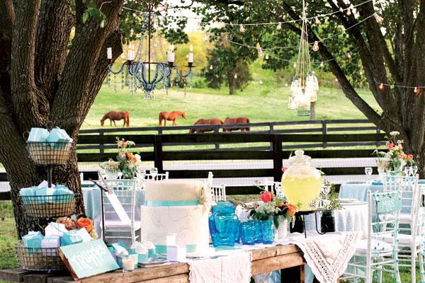 fazenda cavalgadas