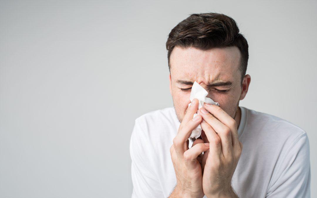 Manter O Sofá Limpo É Essencial Para Evitar Problemas De Saúde No Inverno