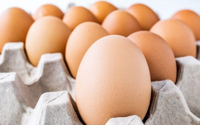 Você sabe ver se seus ovos estão bons e frescos para consumo? Então venha conferir essa matéria com a nossa Personal Organizer, Paula Pinotti!