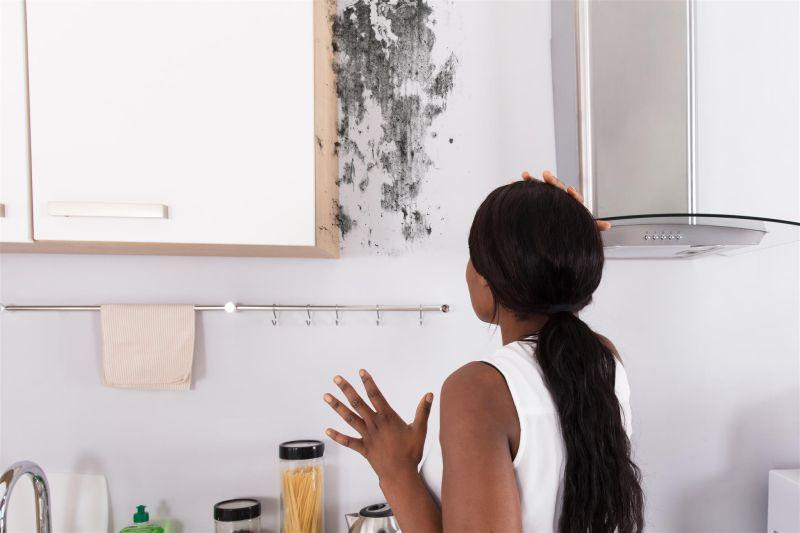 Como evitar que o mofo apareça em sua casa